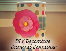 DIY Decorative Oatmeal Container