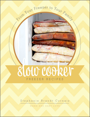 From Your Freezer To Your Family, Slow Cooker Freezer Recipes