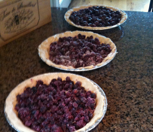 is our favorite mulberry pie recipe and here is our favorite crust ...
